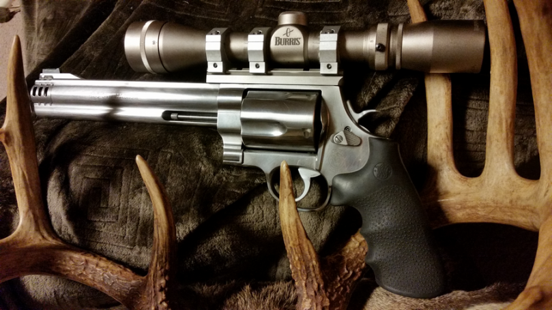 Handgun scope - A revolver with a silver Burris optics
