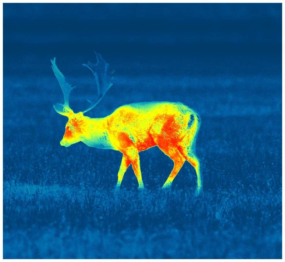 Thermal Imaging Optics - Not Suitable for Trophy Hunting